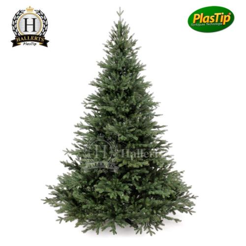 spritzguss weihnachtsbaum nobilistanne oxburgh 180 cm. Black Bedroom Furniture Sets. Home Design Ideas